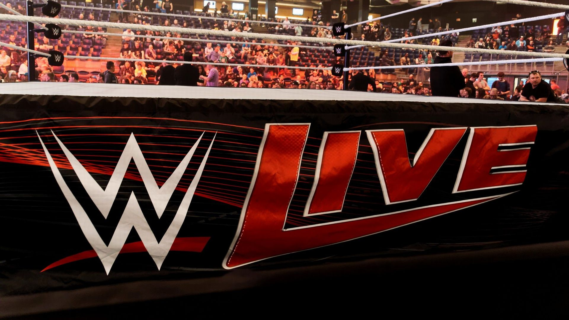 WWE Logo Live Action