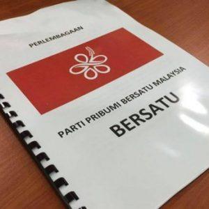 Perlembagaan Parti Bersatu