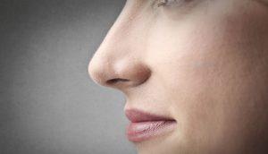 4 Cara Memancungkan Hidung Secara Natural