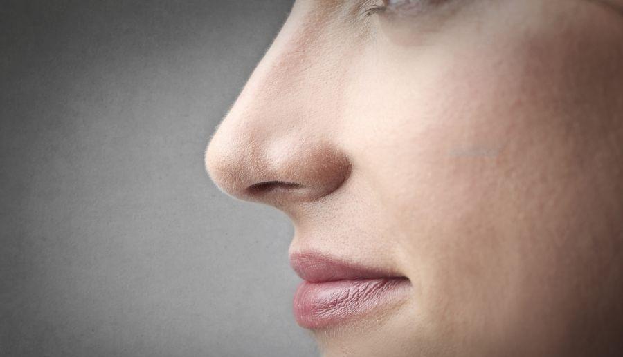 Hidung Cantik
