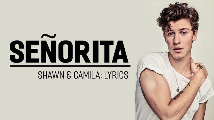 Permalink to Lirik Lagu Senorita – Shawn Mendes & Camila Cabello (Beserta Terjemahan dan Maksudnya)