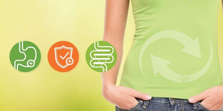 Permalink to Khasiat Makanan Dengan Prebiotik